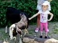 ZSIPS_Dzień Dziecka_312